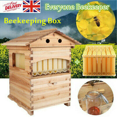 Double Beehive Super Beekeeping Brood House Box + 7 Auto Honey Bee Hive Frames
