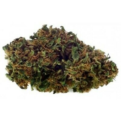 Erba Sativa Light BIG MONKEY 30% 5 gr Infiorescenza Fiore Made In Sardegna