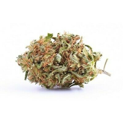 Erba sativa light BIG BANG 39% 2 GR idroponica Fiore canapa made in Italy