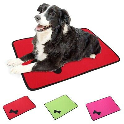 1Pc Pet Mat Dog Summer Sleeping Pad Cat Portable Cooling Mat Cute Puppy Soft Bed