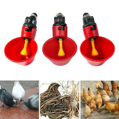 Automatic Cups Water Feeder Drinker Chicken Waterer Poultry Chook for Bird BT
