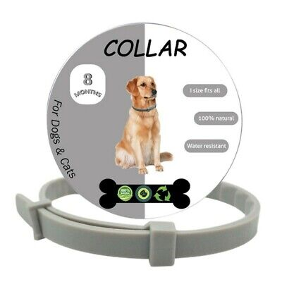 Pet Flea & Tick Collar Anti Insect for Small Dogs Under 8kg (18 lbs) and Cat