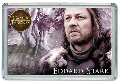 Iman Nevera, Fridge Magnet Juego De Tronos, Game Of Thrones, Eddard Stark