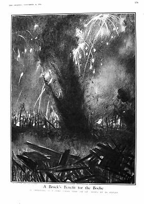 Old 1916 Night Strafe O.P. Boche War Giant Pine Tree Glenmore Forest 20th