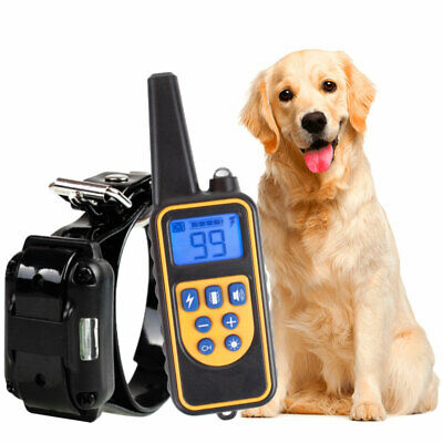 Dog Shock Collar w/ Remote Waterproof Electric For Large 800 Yard Pet Training Y