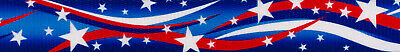Country Brook Design® 3/4 Inch Star Spangled Polyester Webbing, 5 Yards