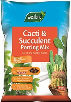 Cacti/Succulent Cactus Potting Compost Soil Mix and Seramis, 4 L