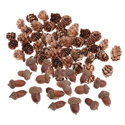 40 Pcs Mini Natural Dried Pine Cones Dried Acorn for Xmas Tree Hanging Decor