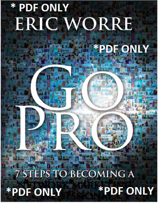 Go Pro : 7 Steps to Becoming a Network Marketing Professional by Eric Worre