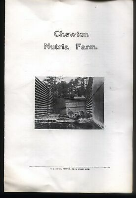 Chewton Nutria Farm, 4 Page Brochure, Printed By E. J. Adams, Of Bath.