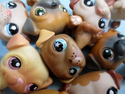 Littlest Pet Shop Set Lot 2 Random Pug Puppy Dogs Authentic Lps and Gift Bag RB