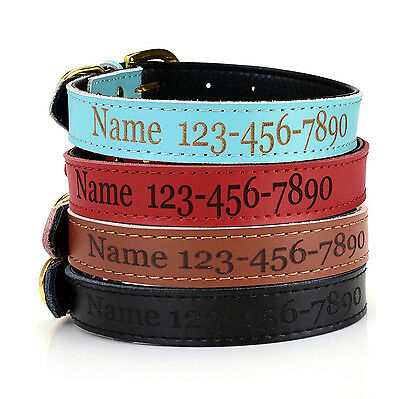 Personalised Pet Dog Cat Puppy Safety PU Leather Collar DIY Name & Numbers