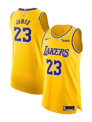 buy popular ef1d4 bc47b LEBRON JAMES LA Lakers Nike Authentic Icon Home Jersey 40 S ...