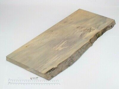 Waney edged Stained English Lime wood board.  290 x 28 x 785mm. Plank.  3236