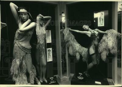 1988 Press Photo Feathered and sequined outfits of superstar Cher - mjx63049