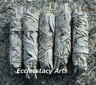 5 California White Sage Smudge Stick / Wands: House Negativity Removal 4 to 5 ""