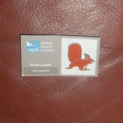 RSPB giving nature a home pin badge - red squirrel   -.British Wildlife