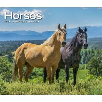 2019 Horses Deluxe Wall Calendar,  by Calendar Ink