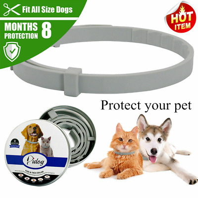 Pet Dog Collar Anti Flea Ticks Mosquitoes Outdoor Protective Adjustable HHH