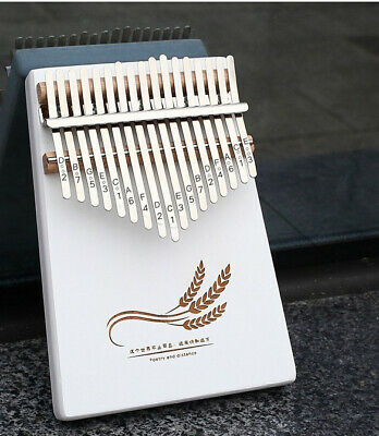 17 Key Finger Percussion Instrument Wooden Kalimba Thumb Piano with Accessories