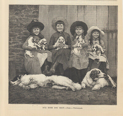 Early Great Pyrenees Dogs Puppies Victorian Girls Antique Print 1886