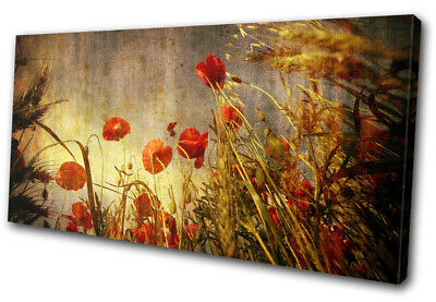 Extra Large Canvas Wall Art Picture Print Abstract Red Poppy Flower JY14
