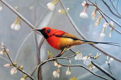 Red Bird Wren Tree Spring Flowers Buds STRETCHED 24X36 Oil On Canvas Painting