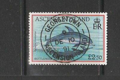 Ascension 1991 Fish Defs £2.50 Used SG 568
