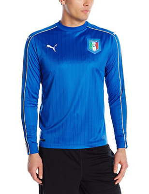 Puma Herren FIGC Italia Training Shorts Zipped Pockets Hose