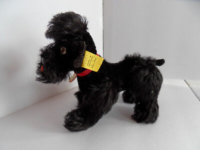 Steiff dog poodle mohair all IDs stuffed animal  Germany 2441