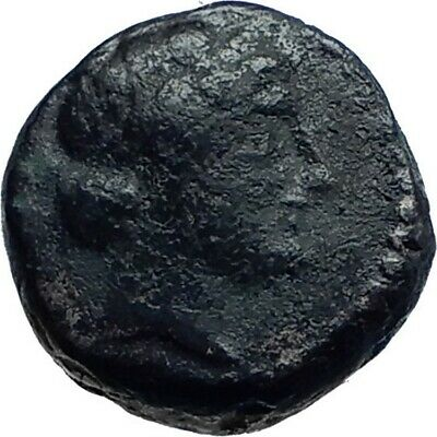 ANTIOCHOS III the GREAT - Rare R1 Ancient Greek SELEUKID Coin ELEPHANT i78212