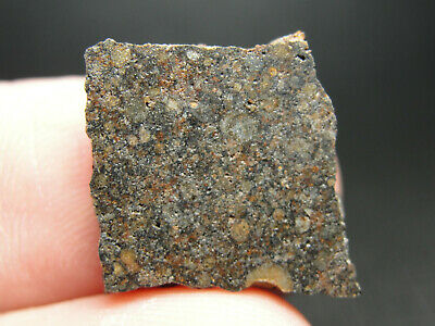 Micro w//COA and Gem Case- Beautiful ZAG-Series Zag Official Meteorite H3//6