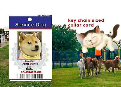 SERVICE ESA PTSD THERAPY DOG KEY OR COLLAR TAG FOR ADA & FHACT SERVICE ANIMALS p