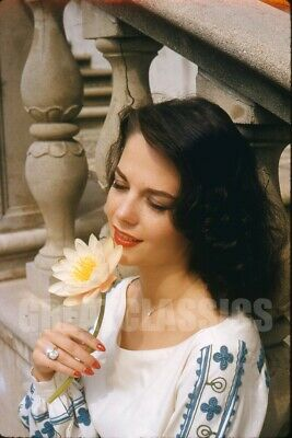 Natalie Wood 1958 Young Lovely Kodachrome Camera Transparency Peter Basch