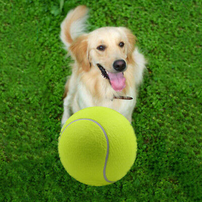 "9,5  ""/24cm Big Giant Pet Dog Puppy tennis lanceur de lanceurs de balle mandr HO"
