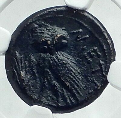 METAPONTION in LUCANIA Authentic Ancient 250BC Greek Coin ATHENA OWL NGC i78647