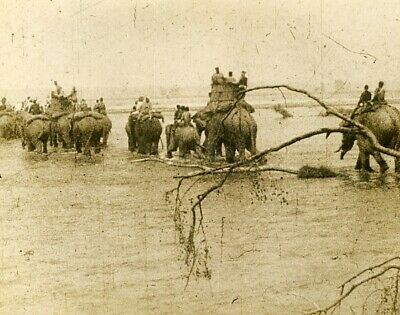 royal hunting Trek Nepal way to the hunt chasse royale elephants 1920' old photo