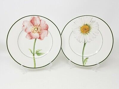 """Villeroy & Boch Country Collection Flora 8.5"""" Salad Plates Daisy & Rose Lot of 2"""