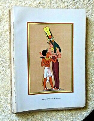 Lot Of 40+ Antique Color Book Plates Of Egyptian Gods 1904 Egypt God