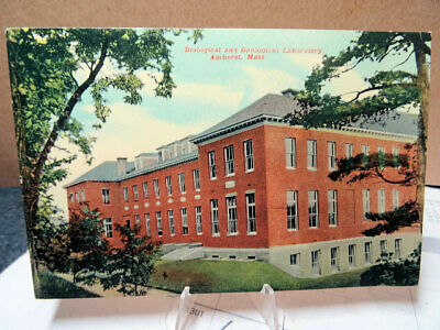 1913 Postcard Biological and Geological Laboratory Amherst Mass MA