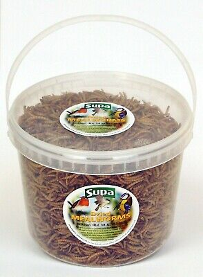 3 Litre Dried Mealworm Mealworms Nutritious Treat For All Wild Birds