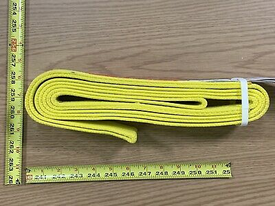 "2"" Wide Standard Nylon Lifting Sling 10 Feet Long Eye To Eye plus Tag USA Made"