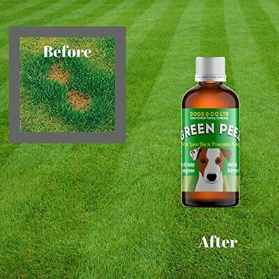 Green Peez, dog urine lawn burn patch prevention for grass. 100ml.