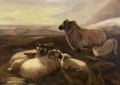 Antique Scottish School Signed Oil Painting On Canvas -  Family Sheep Highlands