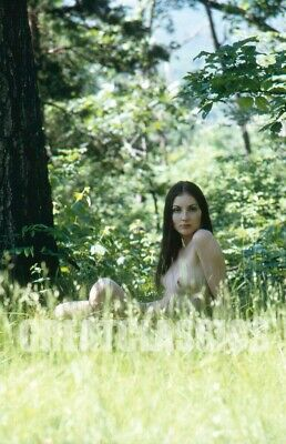 Madeleine Pfahl Nude Nature Model Kodachrome Camera Transparency Peter Basch