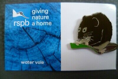 Rspb Water Vole Pin Badge