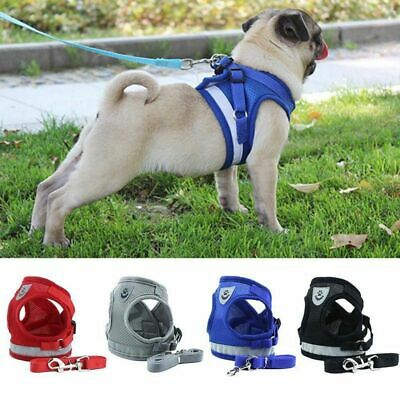 Puppy Small Dog Cat Harness and Walking Leads Set Pet Breathable Mesh Vest GO