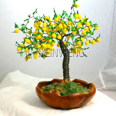 20pcs Lemon Tree Seeds Garden, Potted Balcony, Planting Seasons, Sprouting