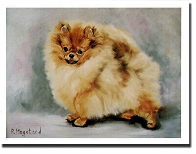 New Red Pomeranian Profile Notecards 6 Note Cards 6 Envelopes Ruth Maystead