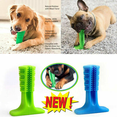 US-Stock New Original Doggie DIY Toothbrush - Free Shipping